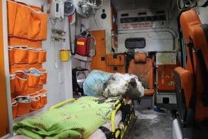 ambulans_5061 (1)